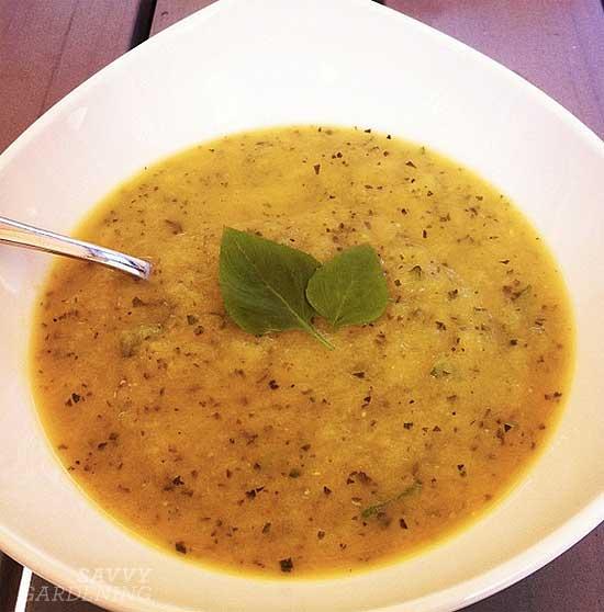 A delicious zucchini soup