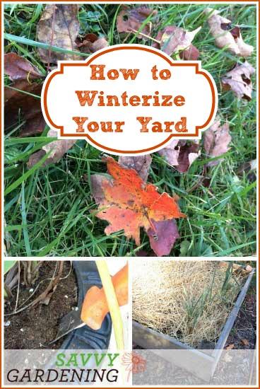 Fall gardening checklist how to winterize your yard - Fall gardening tasks ...